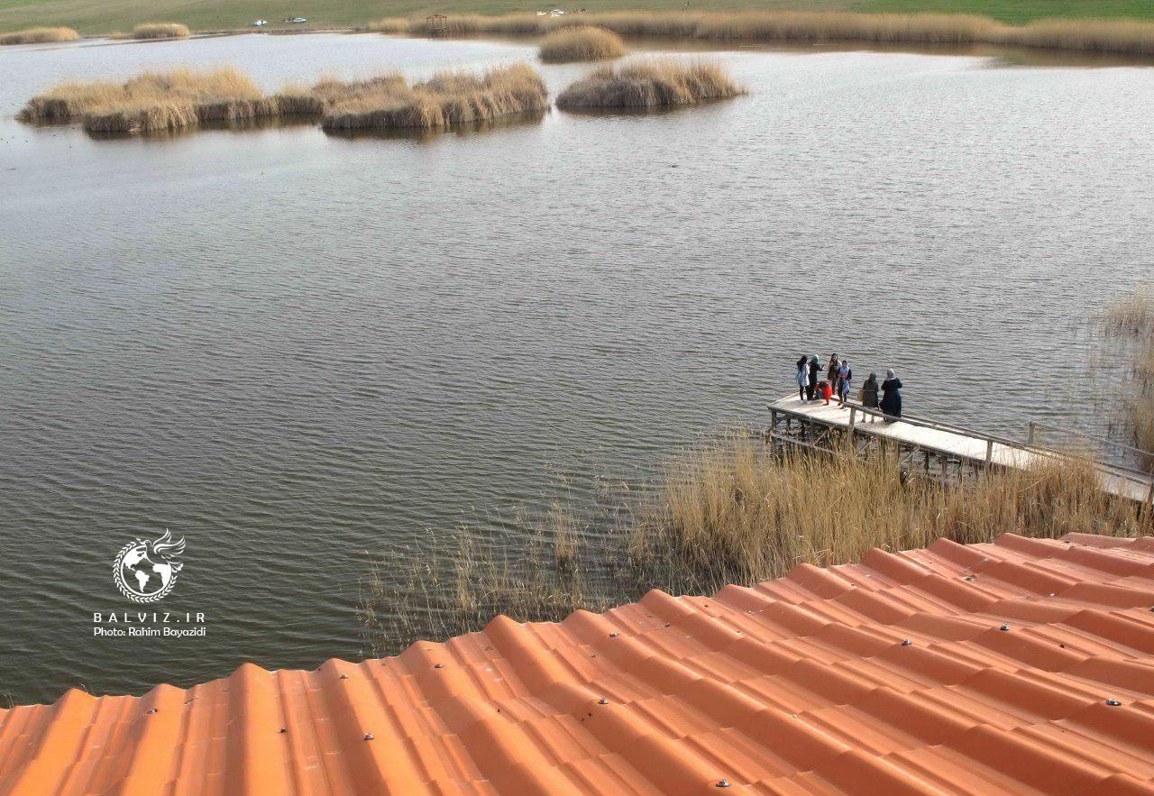 اولین سایت پرنده نگری ایران با جاذبه های زیبا