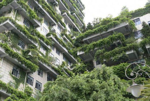 اولین طرح «شهر-جنگل» جهان رونمایی شد