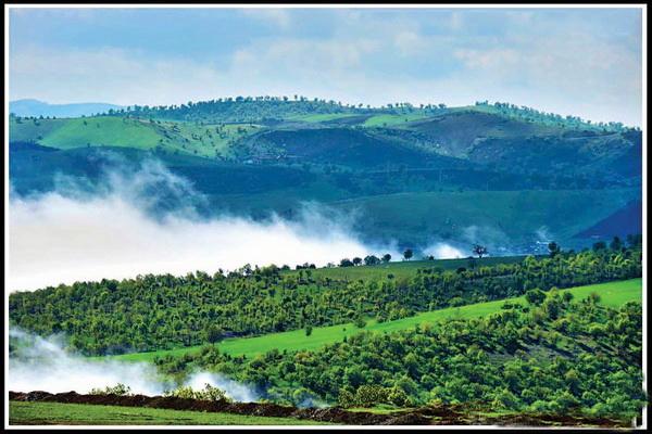 مهمترین نواحی پوشش جنگلی آذربایجان غربی در سردشت وجود دارد
