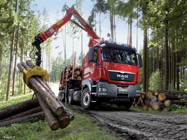 صدور مجوز حمل درختان قطع شده تا پایان فروردین ماه در اشنویه صادر نمی شود