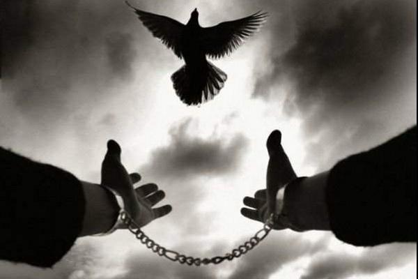 در یک حرکت خداپسندانه ،رهایی قاتل از قصاص با رضایت اولیای دم در ارومیه