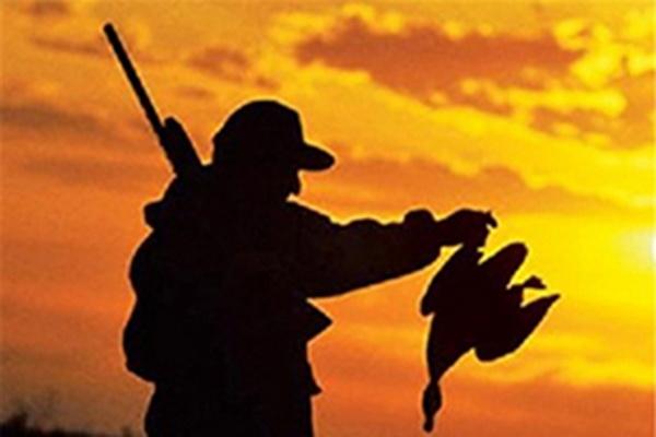 شکارچیان متخلف در مهاباد دستگیر شدند