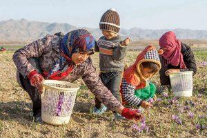 ارائه تسهیلات به روستاییان و عشایر آسیب دیده از کرونا
