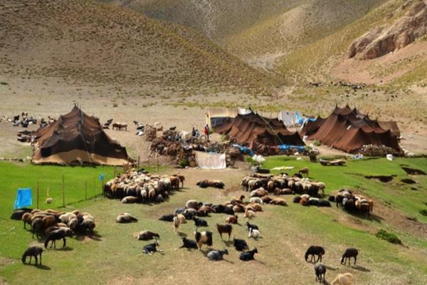 راهاندازی ۱۰ پایگاه سیار ارائه خدمات بهداشتی به عشایر آذربایجانغربی