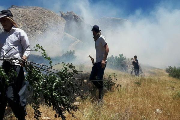 آتش سوزی مراتع روستای قره بابا تکاب مهار شد