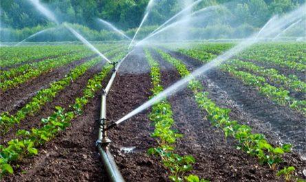 بیش از 200هزار هکتار زمین برای اجرای آبیاری نوین در آذربایجان غربی مستعد هستند