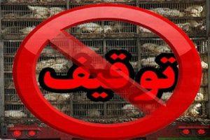 دو خبر کوتاه از بوکان / توقیف بیش از یک هزار قطعه مرغ زنده فاقد مجوز دامپزشکی