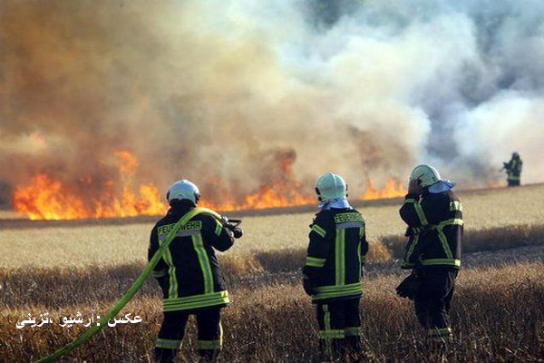 آتش به جان گندم زارهای روستای دنگز از توابع شهرستان بوکان افتاد