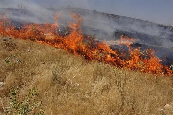 آتش زدن علف های هرز موجب خسارت میلیاردی در بوکان شد