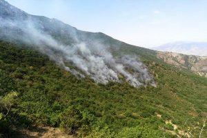 آتش سوزی منطقه حفاظت شده کوسالان - شاهو مهار شد