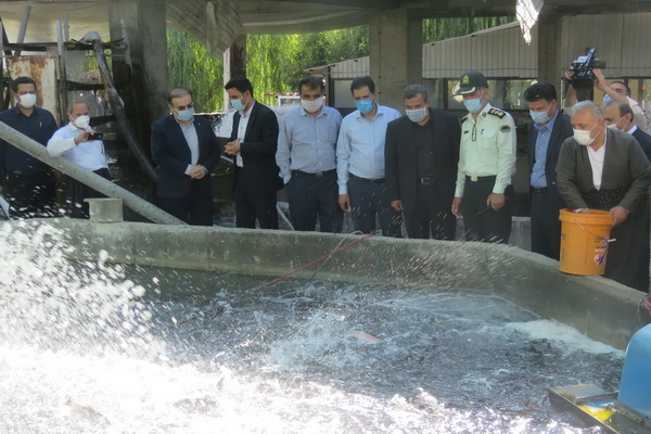 در چهارمین روز از هفته دولت در مهاباد،کلنگ زنی و افتتاح پروژه عمرانی ،کشاورزی