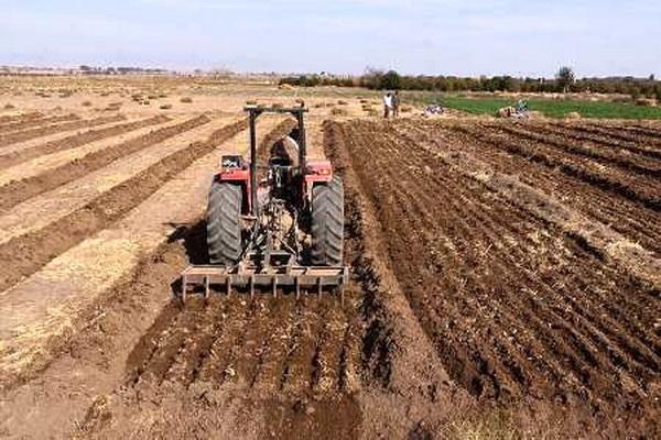 تقویت محصولات کشت پاییزه و رفع موانع در مهاباد مورد بررسی قرار گرفت