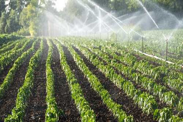 وام بلاعوض آبیاری تحت فشار به کشاورزان سردشتی