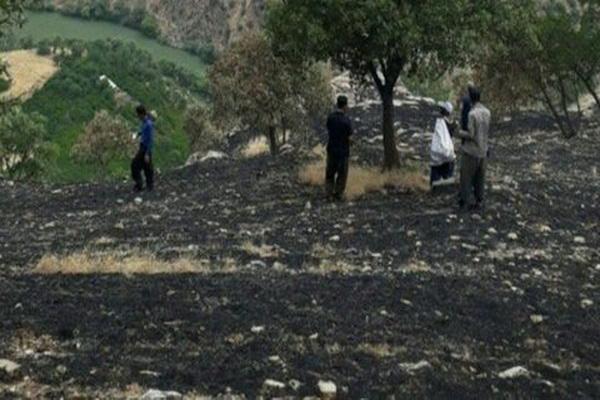 بیش از ۱ هزار هکتار از اراضی منطقه حفاظت شده بیجار طعمه حریق شد