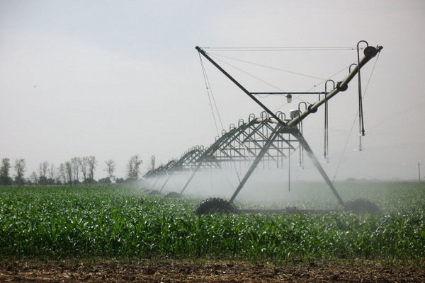 """اجرای سامانه های """"نوین آبیاری"""" صرفه جویی آب را در بخش کشاورزی به همراه دارد"""