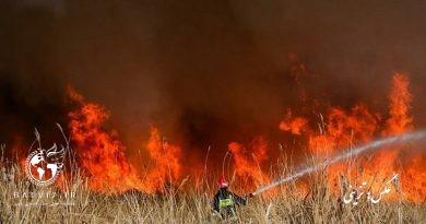 18 هکتار از اراضی اطراف تالاب کانی برازان مهاباد طعمه حریق شد