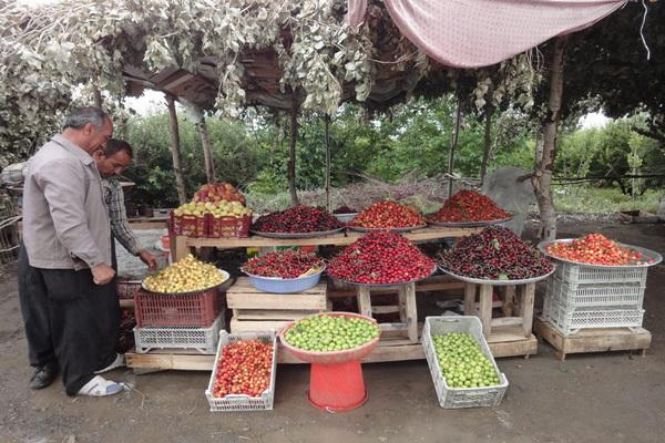 اصناف و بازار اشنویه ده روز تعطیل خواهد شد