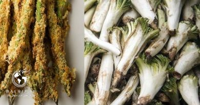 دستور پخت سه غذای سنتی خوشمزه کردستان
