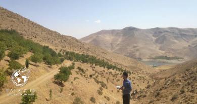 تداوم نظارت منابع طبیعی مهاباد بر اراضی ملی