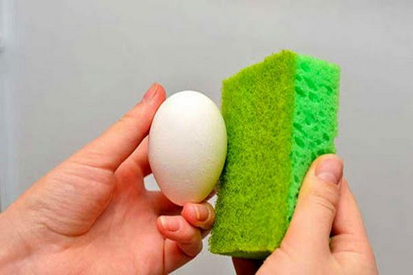 چگونه و چه زمانی تخم مرغ را باید شست یا ضد عفونی کرد؟