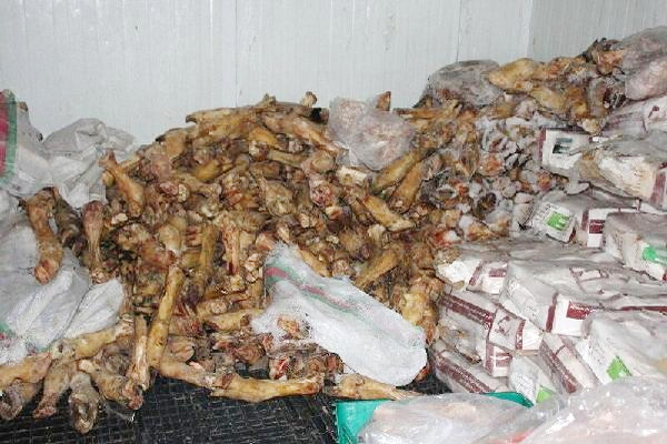 400 کیلو گرم فرآورده های دامی غیر بهداشتی در بوکان معدوم شد