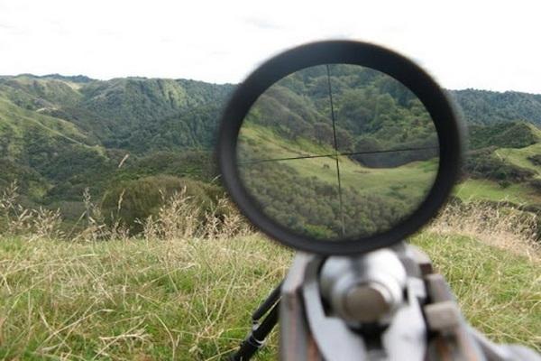 شکارچیان متخلف در شهرستان پیرانشهر دستگیر شدند
