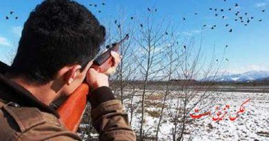 صدای تیر اندازی شکارچیان متخلف در اشنویه را به دام انداخت