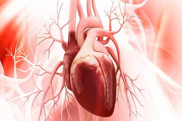 بیشترین مأموریتهای اورژانسی کرمانشاه مربوط به بیماران تنفسی و قلبی است