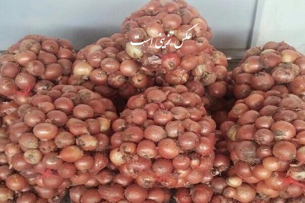 انبار احتکار شده 150 تن پیاز در مهاباد کشف شد