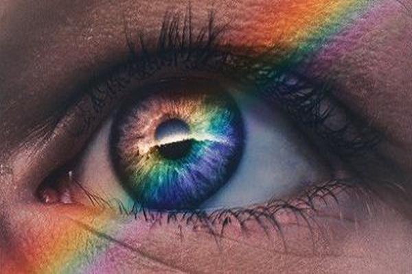 افراد کور رنگ دنیا را خاکستری می بینند