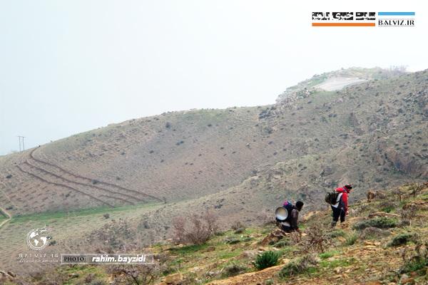 برگزاری هرگونه همایش و گردهمایی کوهنوردی در ایام نوروز در مهاباد ممنوع است