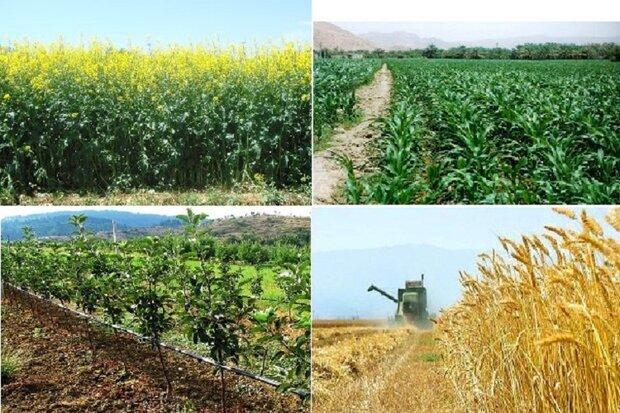 جهاد کشاورزی آذربایجان غربی در ایام نوروز ۱۴۰۰ تعطیل نیست
