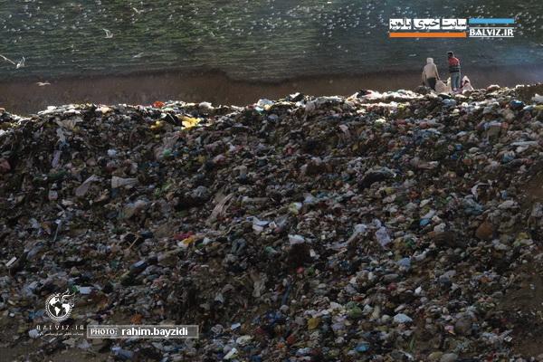 طلای کثیف در سطل زباله،هنر تبدیل زباله به ثروت