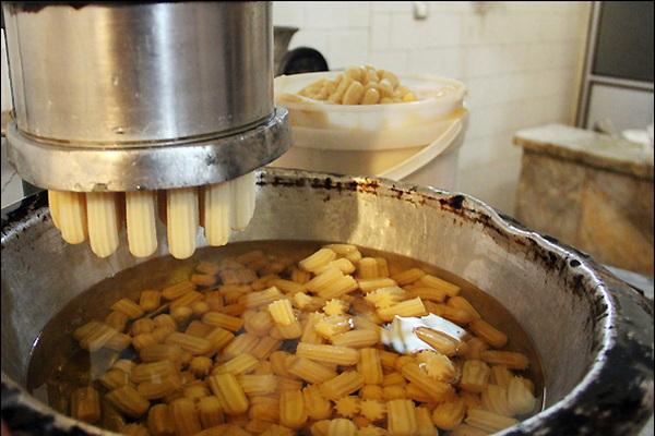 سه کارگاه تولید بامیه و زولبیا در پیرانشهر پلمب شد