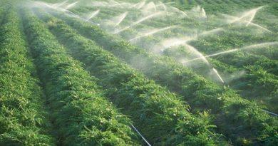 بحران کم آبی و مدیریت آب،کشاورزان مهابادی را به کدام سو می کشاند؟