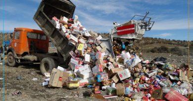 بیش از 6 تن مواد غذایی در سردشت معدوم شد