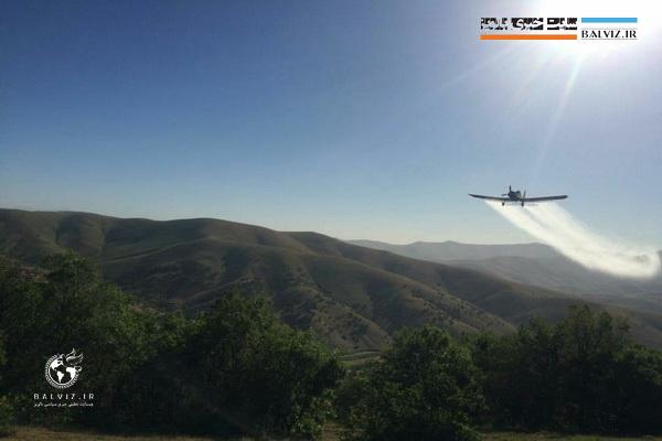 عملیات سمپاشی هوایی جنگل های مهاباد آغاز شد