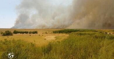 آتش سوزی گسترده در تالاب بین المللی کانی برازان مهاباد