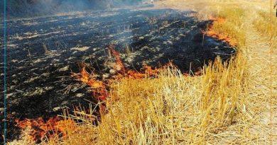 وقوع 3 مورد آتش سوزی در مهاباد
