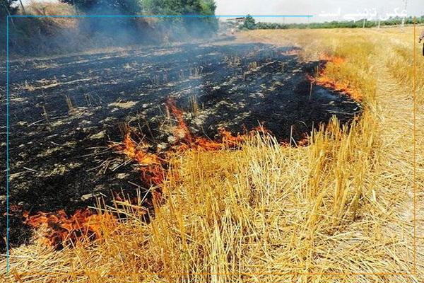 وقوع ۳ مورد آتش سوزی در مهاباد