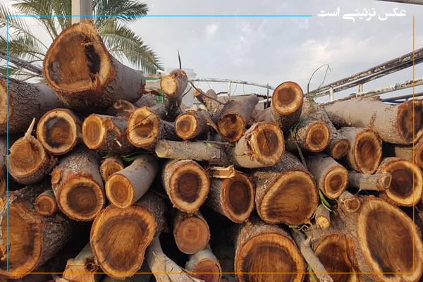۳ تن چوب قاچاق در مهاباد کشف شد