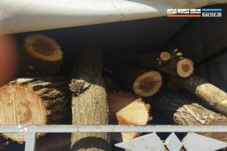 توقیف ۲ تن چوب قاچاق در مهاباد