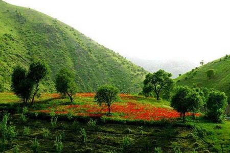 مهاباد رتبه اول همیاران طبیعت را به خود اختصاص داد