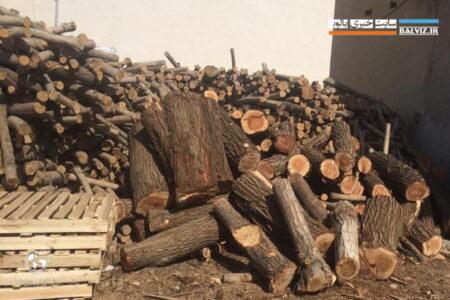 ضربه اداره منابع طبیعی مهاباد بر پیکره سوداگران منابع طبیعی